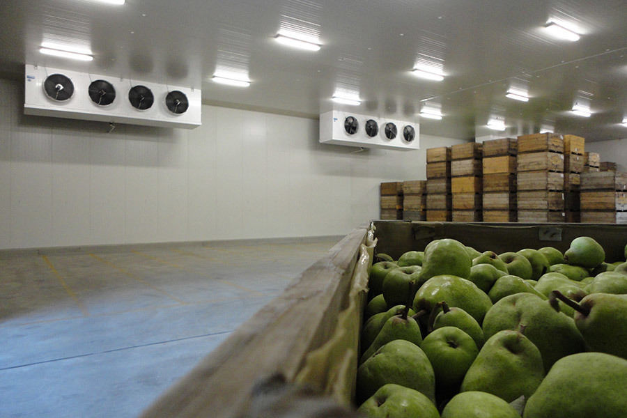 Fruit warehouse, Australia