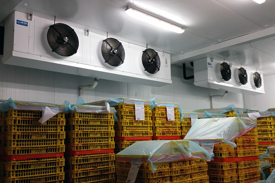 CHS industrial unit cooler installation, Costa Brava, Spain